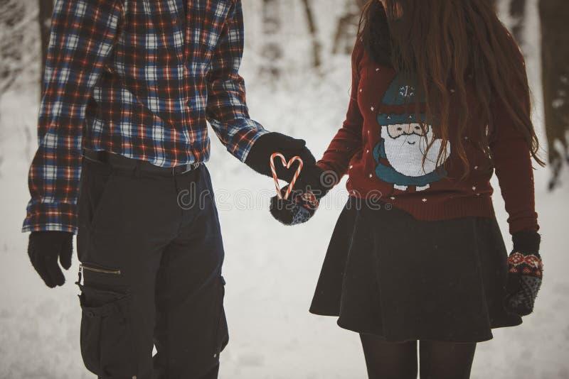 爱恋的夫妇在多雪的森林里 免版税库存照片