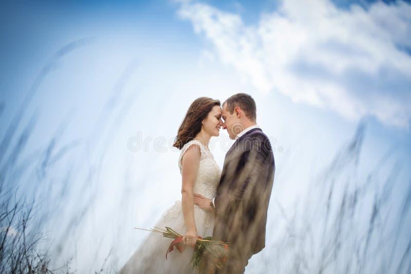 爱恋的夫妇是山的新婚佳偶 有花束的时髦的新娘亲吻新郎 爱,保真度和 免版税库存照片