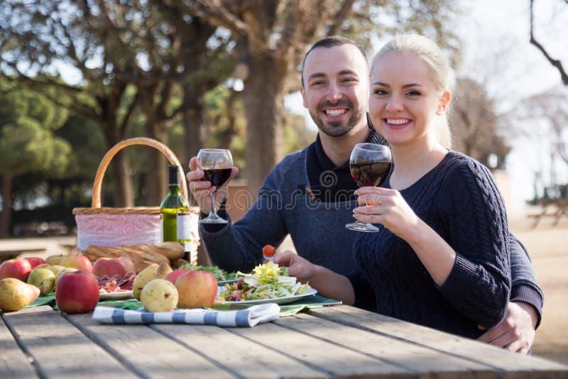 爱恋的年轻夫妇饮用的酒和谈话在野餐 免版税库存照片