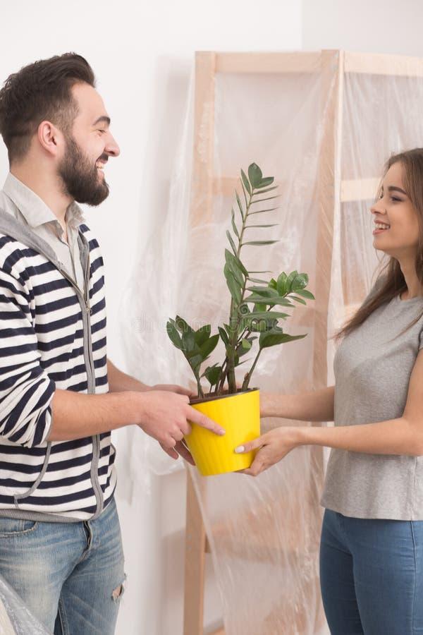 爱恋的年轻拿着植物的人和妇女在拆迁以后 库存图片