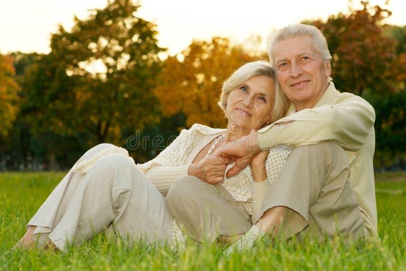 爱恋的年长夫妇 免版税库存照片