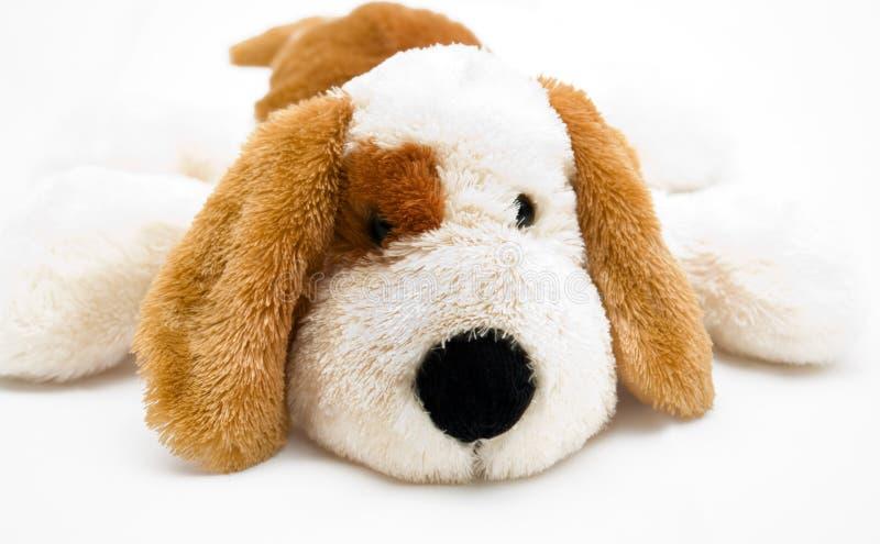 爱拥抱小狗软的玩具 库存图片