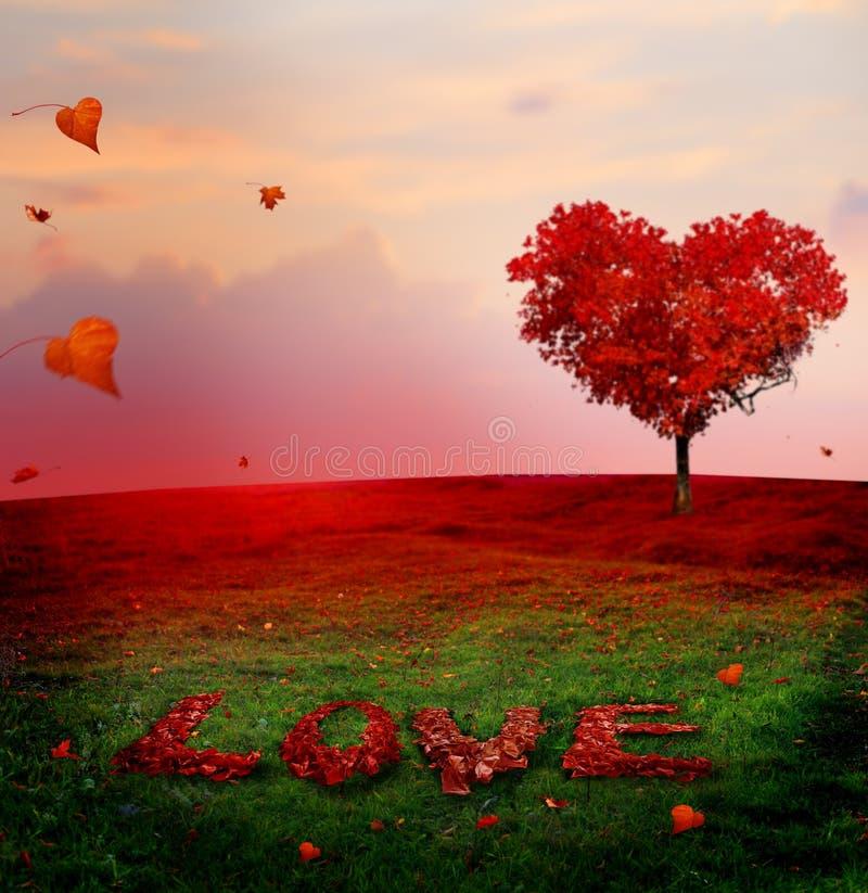 爱树在秋天 在日落的红色心形的树 秋天s 免版税图库摄影