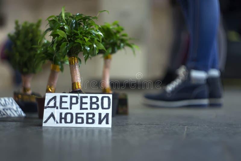爱树在罐的,在一个地铁的地板上在通过人前面的 库存图片