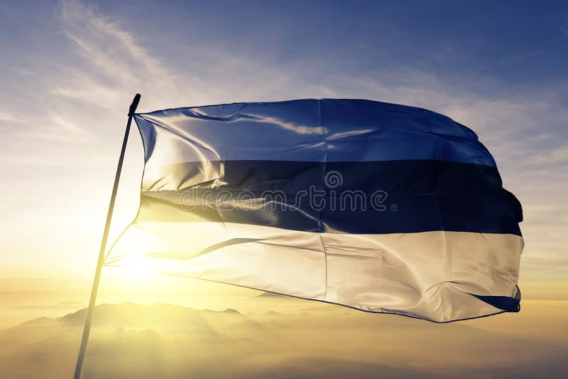 爱沙尼亚国旗纺织品挥动在上面的布料织品 皇族释放例证
