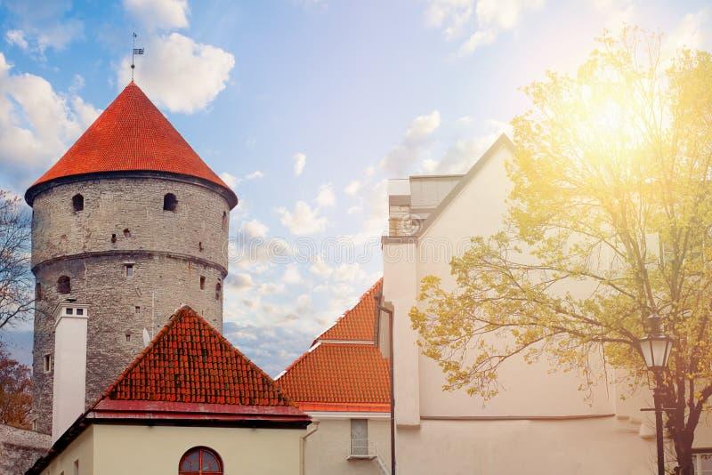 爱沙尼亚塔林 老火炮塔济科在de科克在春天 库存图片