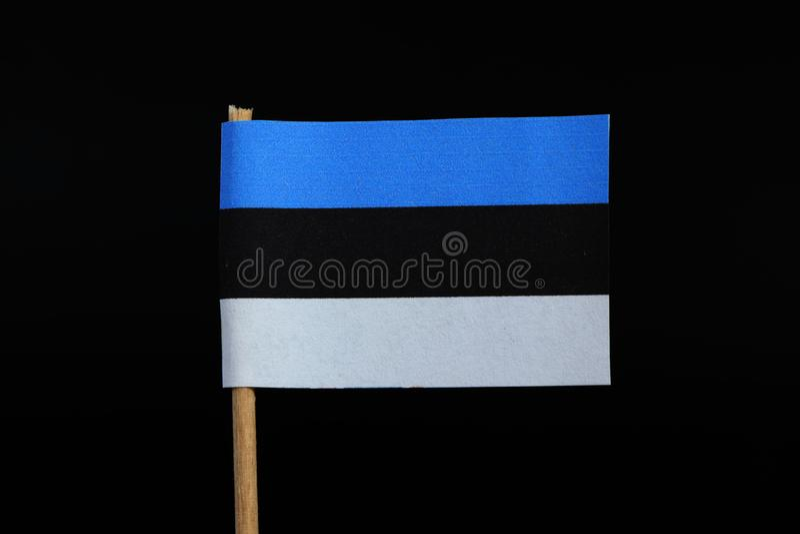 爱沙尼亚的官员和国旗牙签的在黑背景 一水平的triband蓝色,黑白 库存照片