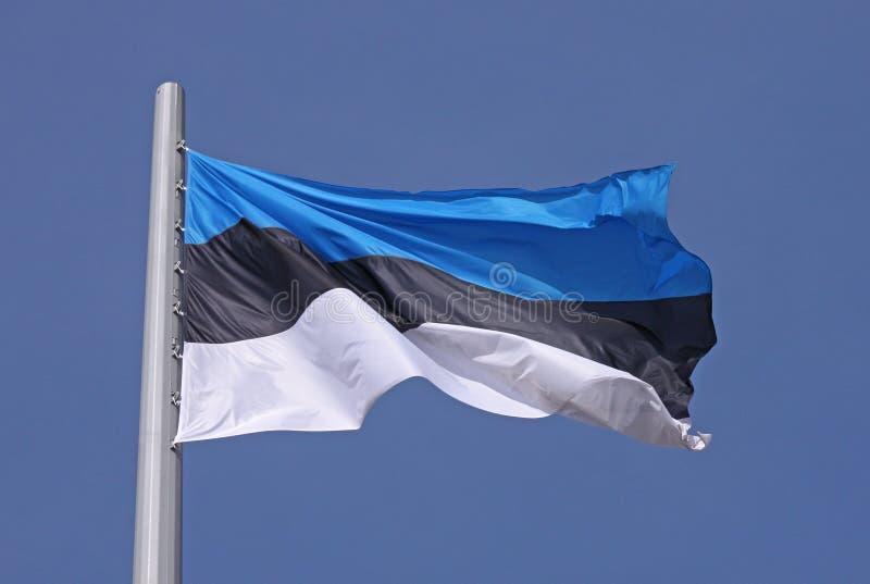 爱沙尼亚的旗子 库存照片