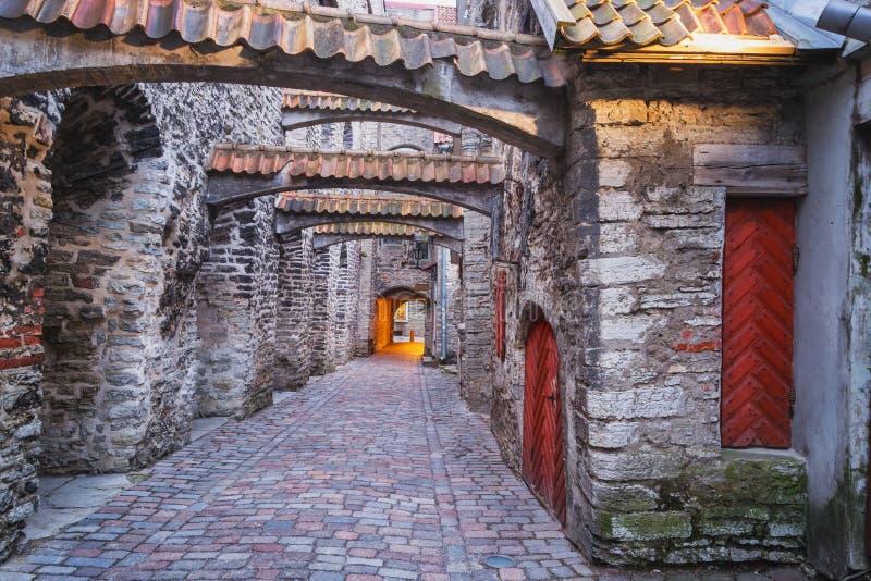 爱沙尼亚老塔林城镇 库存图片
