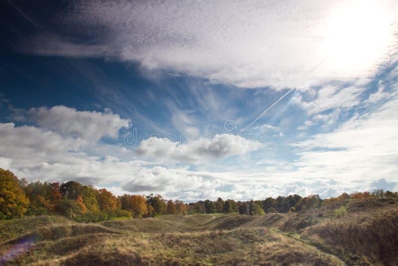 爱沙尼亚语森林的秋天风景 库存图片