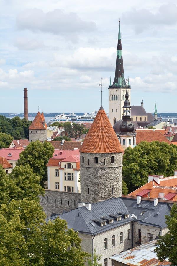 爱沙尼亚,塔林 免版税库存图片
