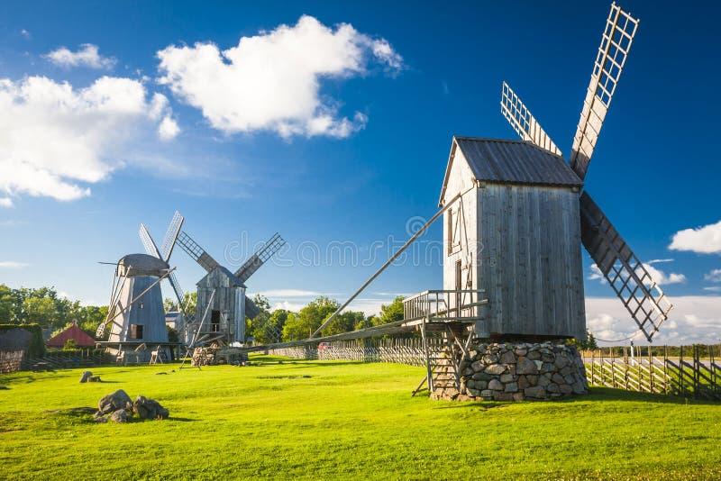 爱沙尼亚 免版税库存照片