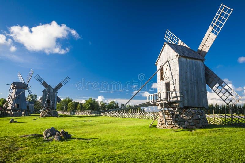爱沙尼亚 库存照片
