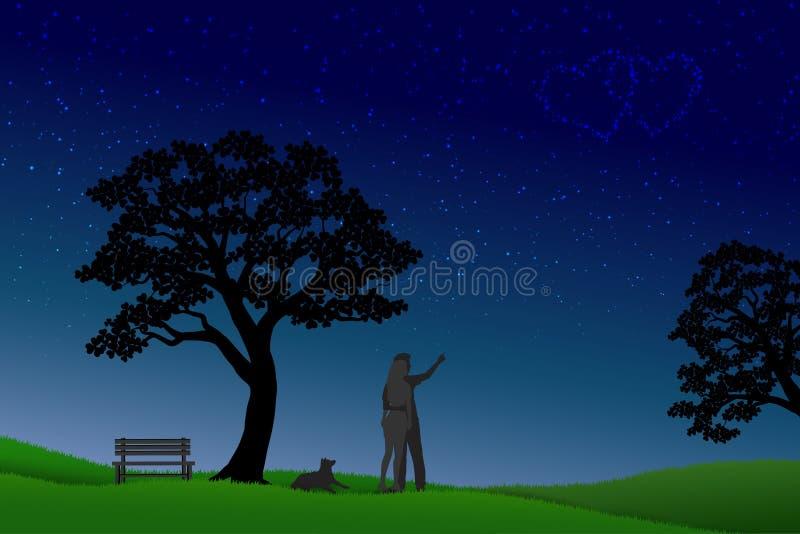 爱的概念在晚上,华伦泰与站立在草和看对在天空的星的夫妇的` s天 库存例证