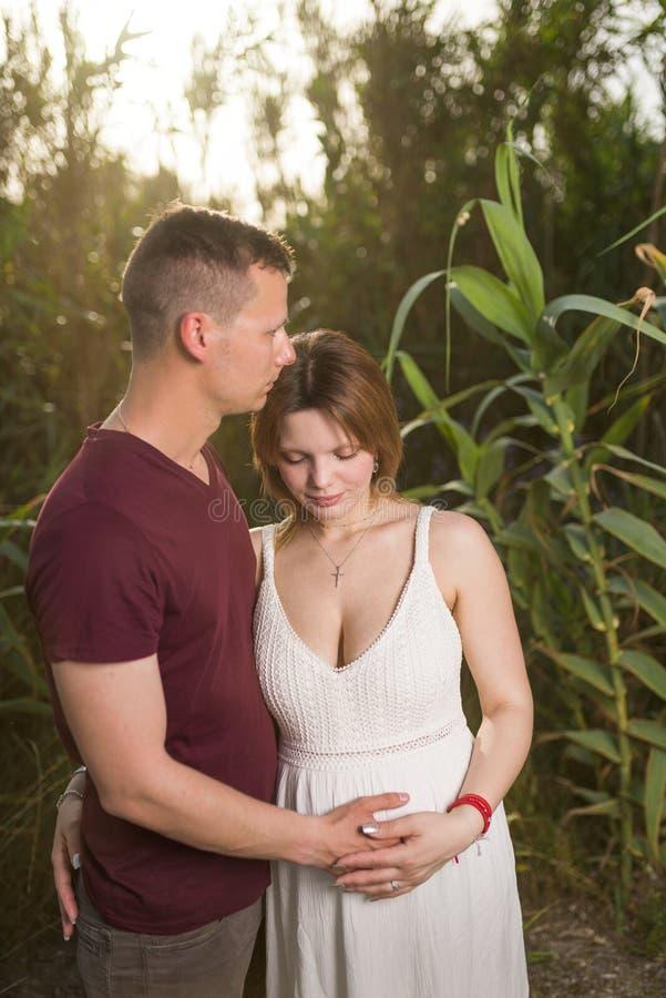 爱的男人和愉快的孕妇在夏天公园 库存图片