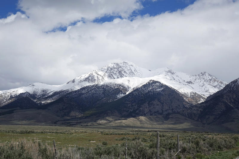 爱达荷` s最高的峰顶- Mt 博拉 免版税库存图片
