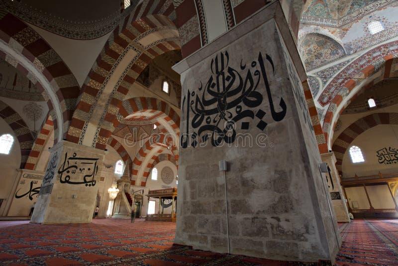 爱迪尔内清真寺老火鸡 免版税图库摄影