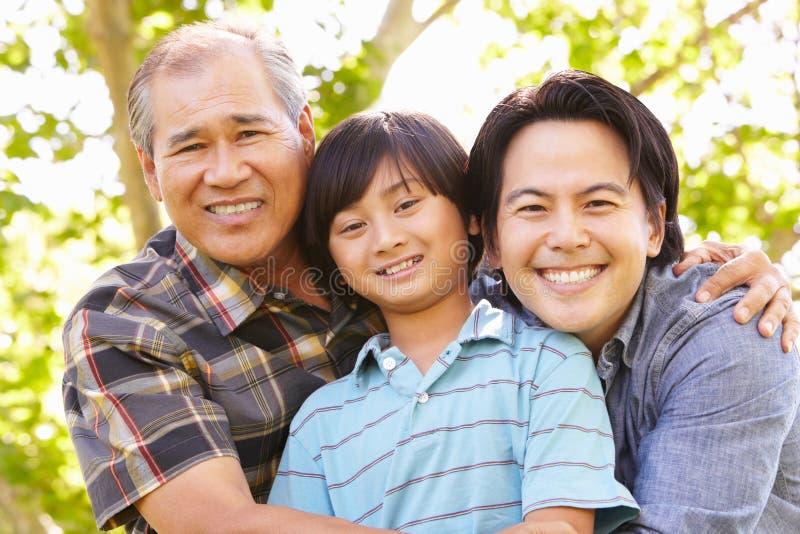 父亲、祖父和儿子画象 库存图片