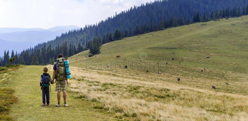 父亲和儿子有一起远足在风景夏天绿色山的背包的 站立的爸爸和的孩子享用风景山 免版税图库摄影