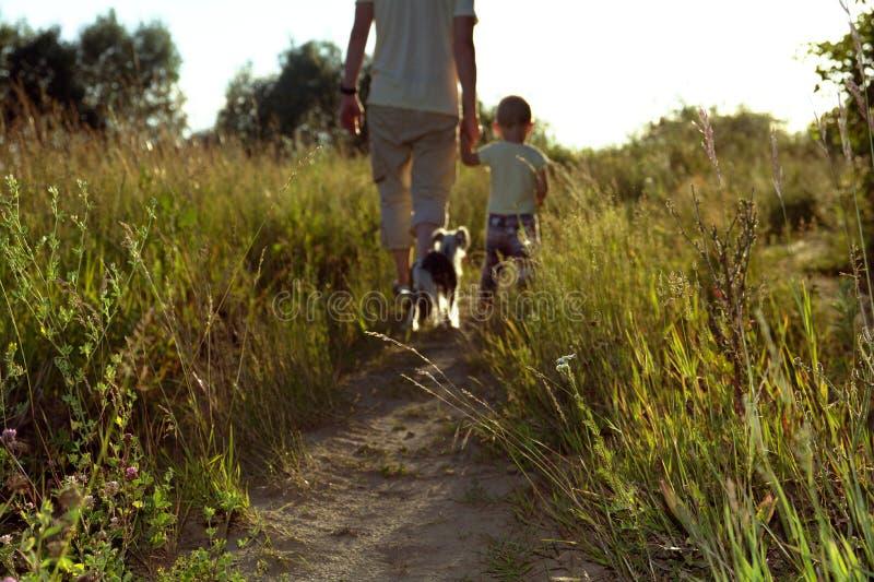 父亲和儿子步行的被弄脏的照片本质上在一个晴朗的晚上与狗 免版税库存照片