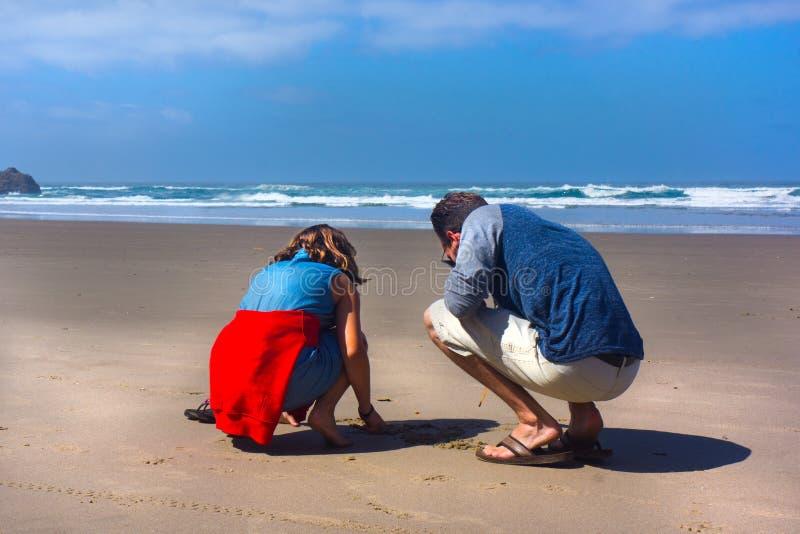 父亲和女儿寻找壳的海滩的 库存照片