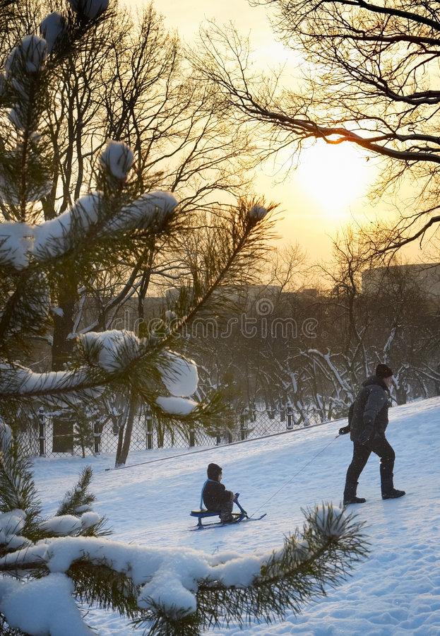 父亲孩子公园冬天 免版税图库摄影