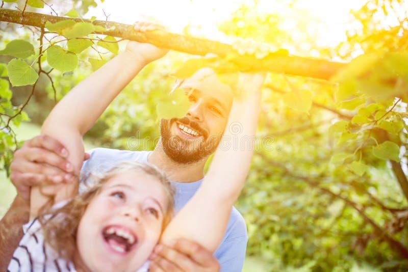 父亲帮助女儿攀登树 库存照片