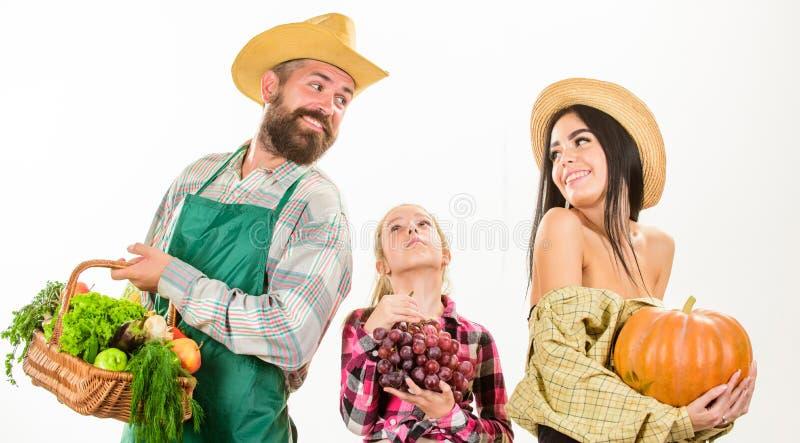 父母和女儿农夫庆祝收获假日 家庭农夫花匠篮子收获被隔绝的白色 图库摄影