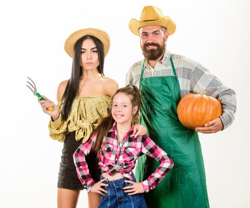 父母和女儿庆祝收获假日南瓜 收获节日概念 家庭农夫花匠南瓜 图库摄影