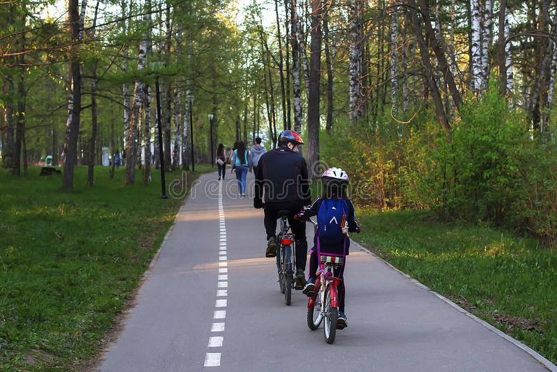 爸爸和女儿自行车的在公园,背面图 免版税图库摄影