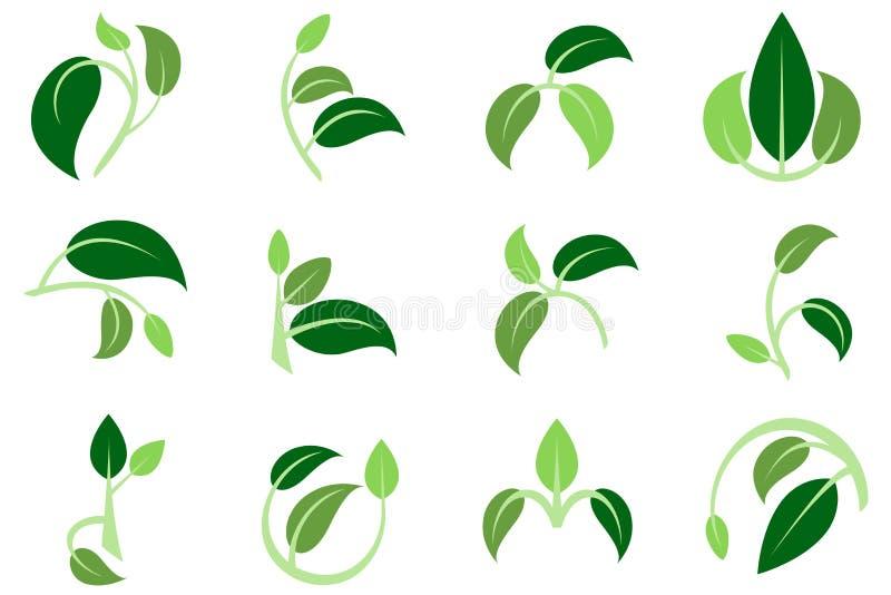 3片叶子3上色3根枝杈标志商标 皇族释放例证