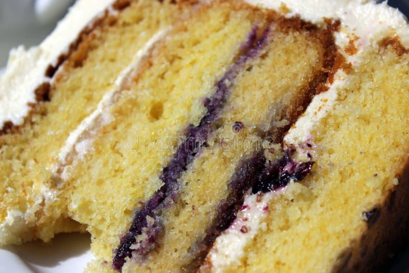 片式蛋糕 图库摄影