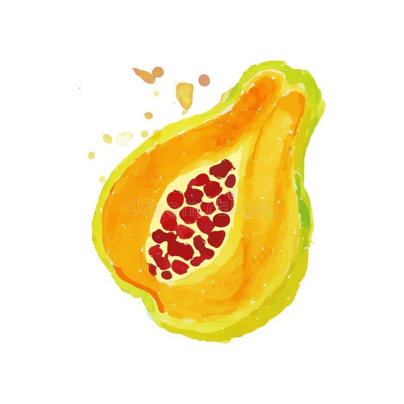 片断番木瓜木瓜明亮的水彩绘画  热带水果概念 素食营养 有机和鲜美食物 库存例证