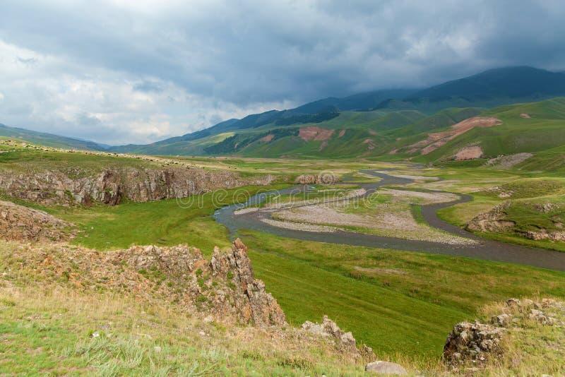 片段运行小的石头的山河 图库摄影