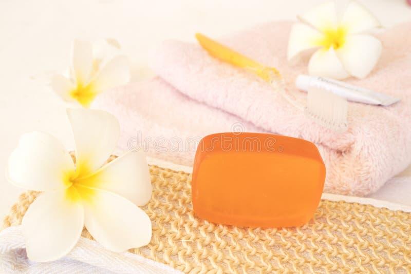 牙刷、牙膏和生活方式妇女草本肥皂医疗保健  免版税库存图片
