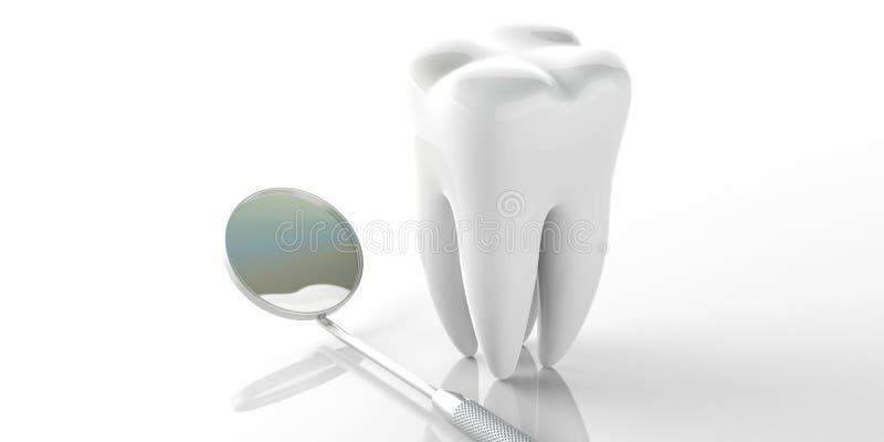牙医镜子和一个牙模型在白色背景 3d例证 库存例证