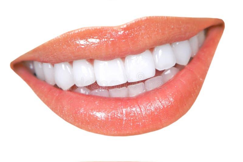 牙妇女 库存照片