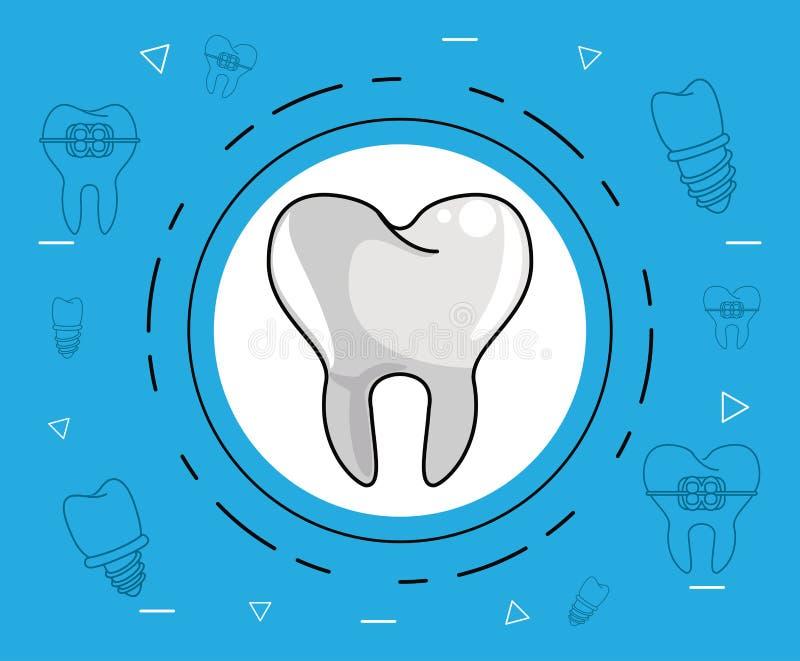 牙牙齿保护 皇族释放例证
