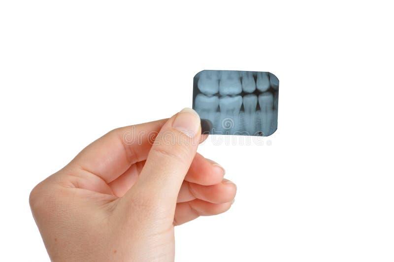 牙科医生女性拿着光芒x 库存照片