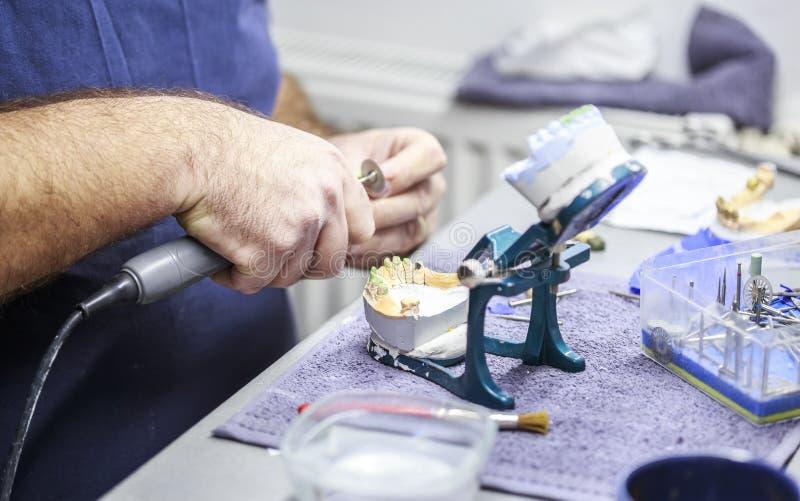 牙科技师与发音清楚的人一起使用在牙齿实验室 免版税图库摄影