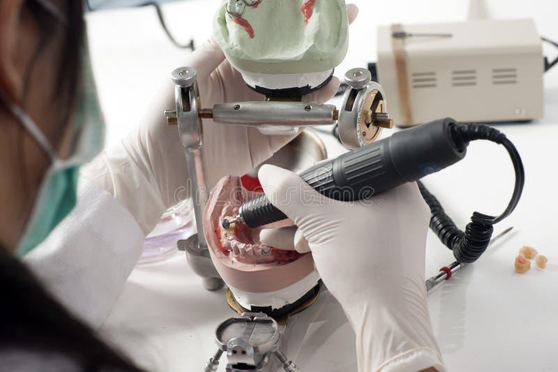 牙科技师与发音清楚的人一起使用 库存照片