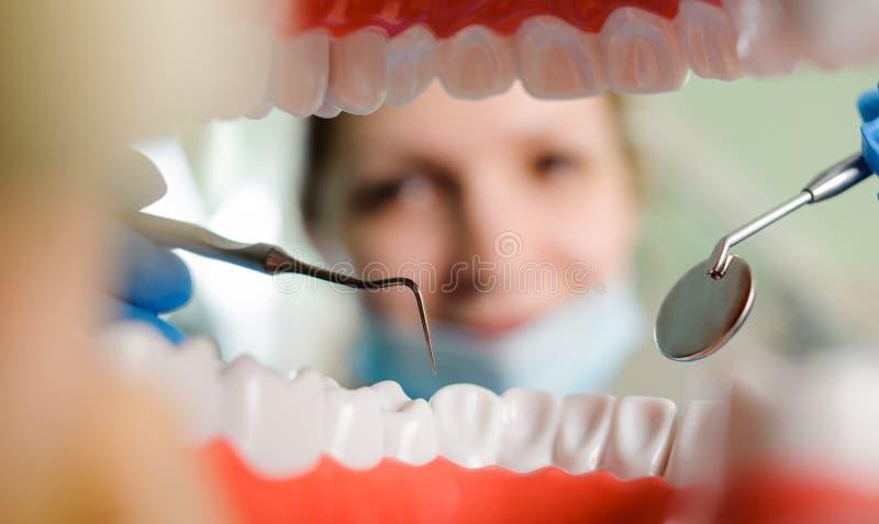 牙科 从牙构筑的嘴的看法 免版税库存照片