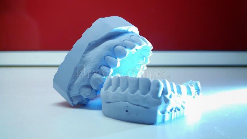 牙科 库存照片