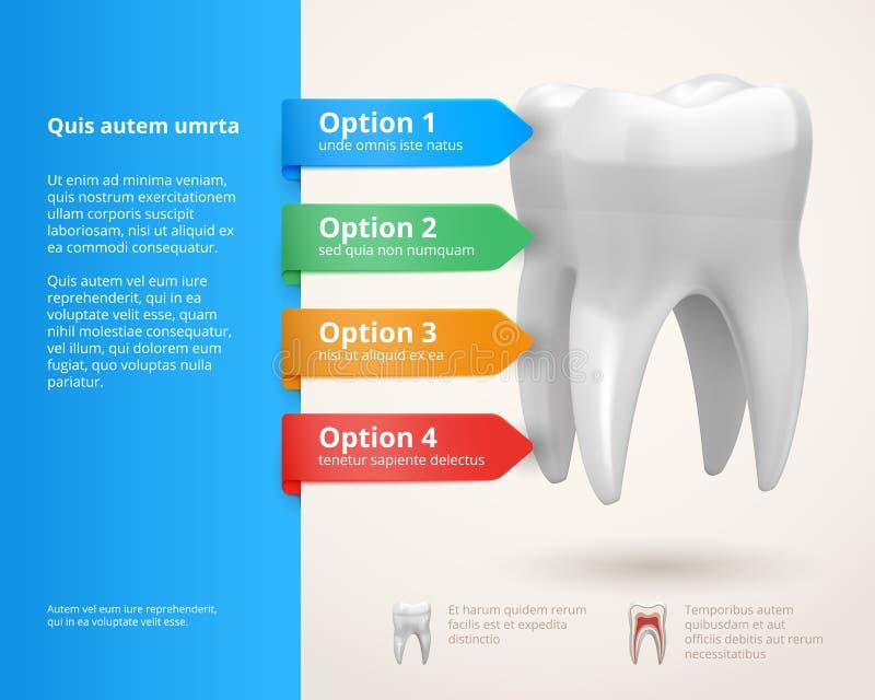 牙科infographics 向量例证
