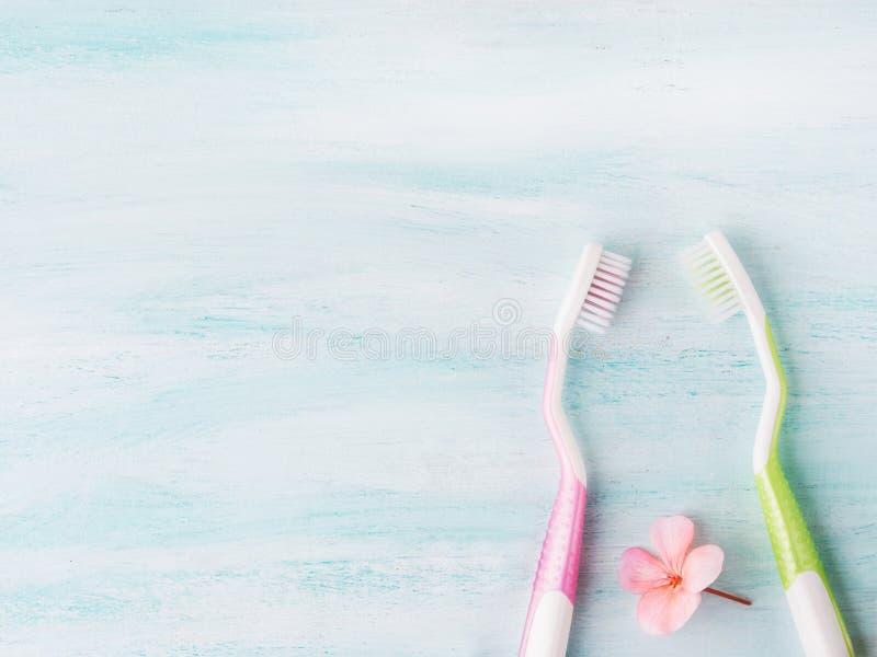 牙齿卫生学概念 牙刷,花,薄菏 库存图片