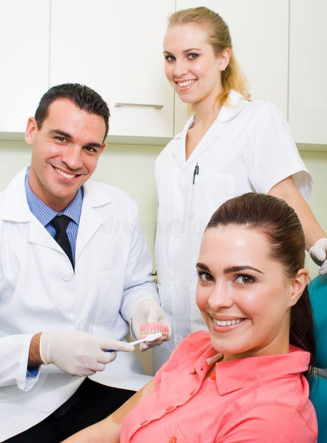 牙齿教育 库存图片