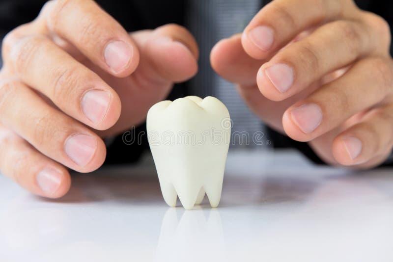 牙齿概念 库存图片