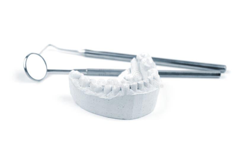 牙齿模子工具 免版税图库摄影