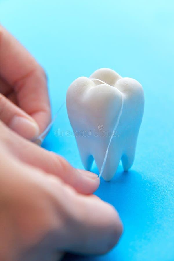 牙齿的概念 免版税库存照片