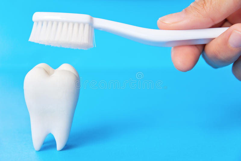 牙齿的概念 库存图片